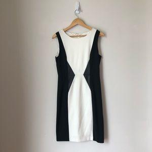 Calvin Klein Black And White Color Blocked Dress